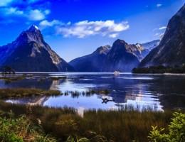 NUEVA ZELANDA TRADICIONAL (Desde Abril 2021)